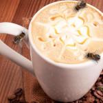 albine si cafea