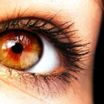 161130-amber-eye