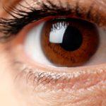 161130-brown-eye
