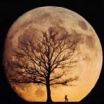 Luna a' mare