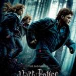 Harry, file de poveste (despre Potter și Talismanele Morții, partea I)