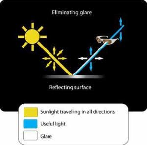 polarised_diagram