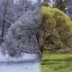 De ce iarna nu-i ca vara (II)