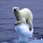 S-a votat: încălzirea globală există!