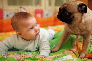 baby-and-dog-surprised-700x467