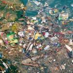 Bacterii care mănîncă plastic și fac petrol din eșapament
