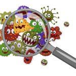 Leac de cojocul superbacteriilor?